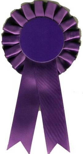 tn-purple-270x500