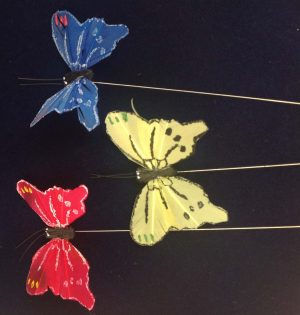 Butterfly display items